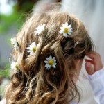 image of flower girl hairstyle with daisies